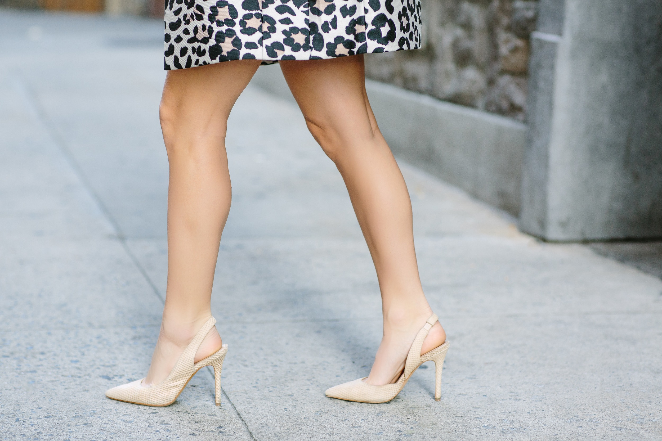 Vince Camuto Shoes & Leopard Top_Fashion Ambitionist.JPG