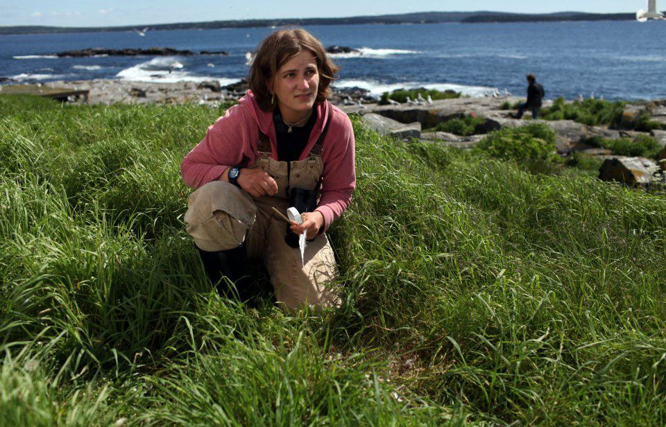 Jordan is a natural explorer herself. Here's a shot of her from a few years ago doing a gull count on Egg Rock.