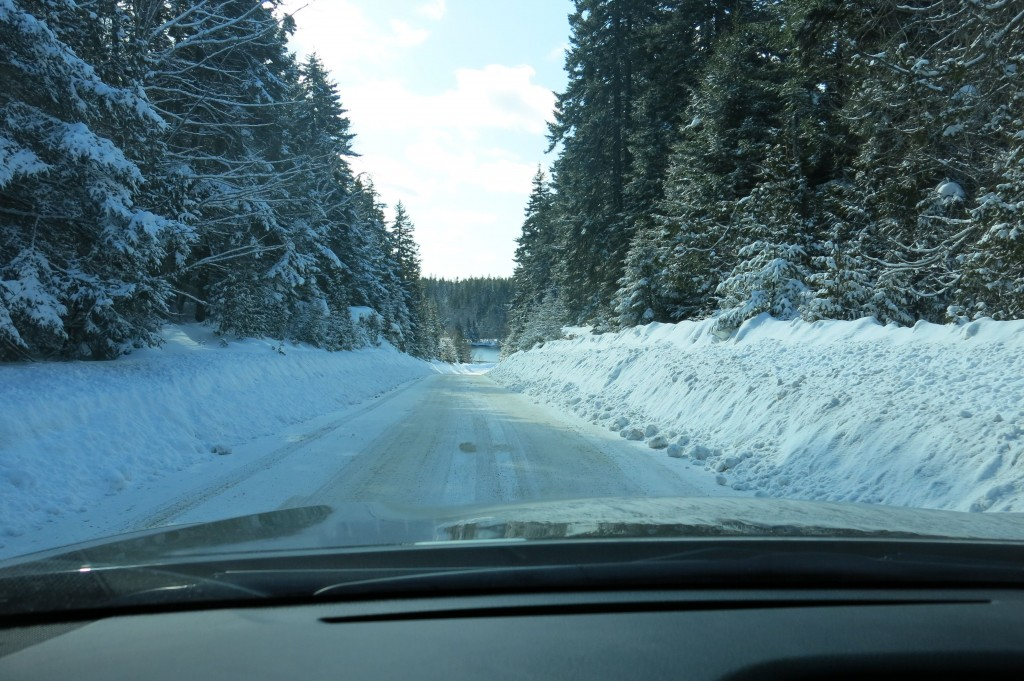 Even the drive Schoodic was a wintry escape.