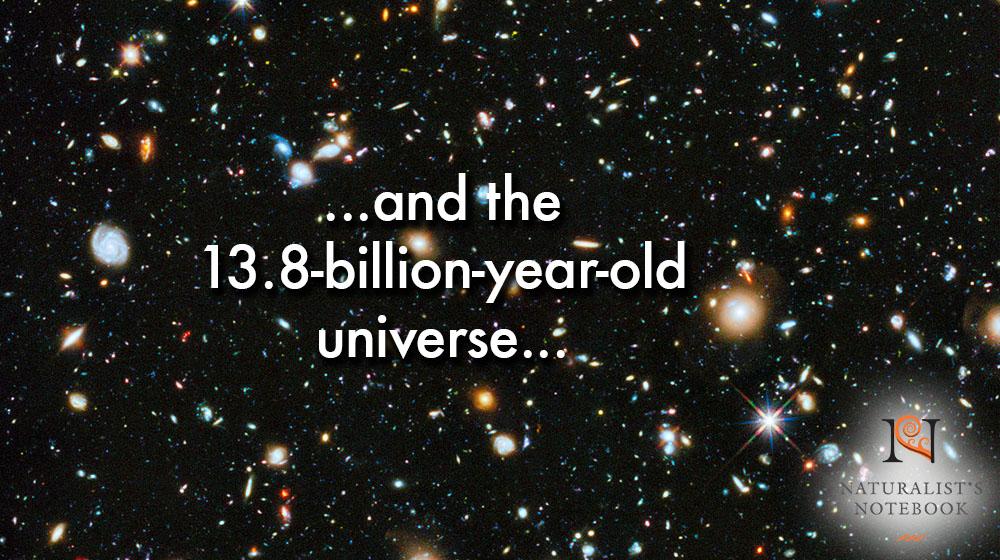 universeslidetext.jpg
