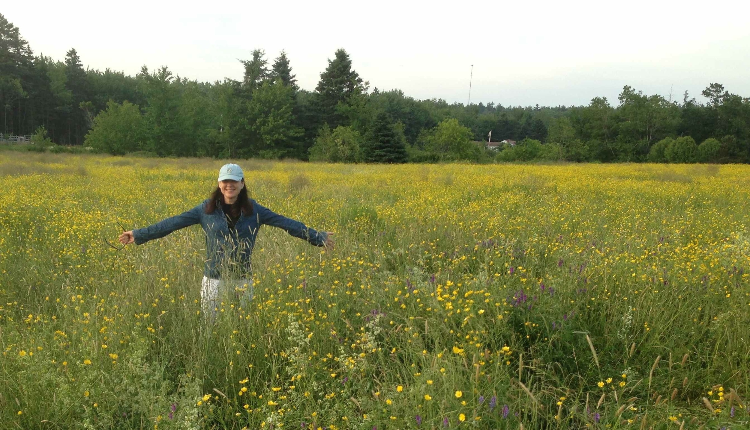 Pamelia in The Field in July 2014. You never know what will grow in this natural installation site.