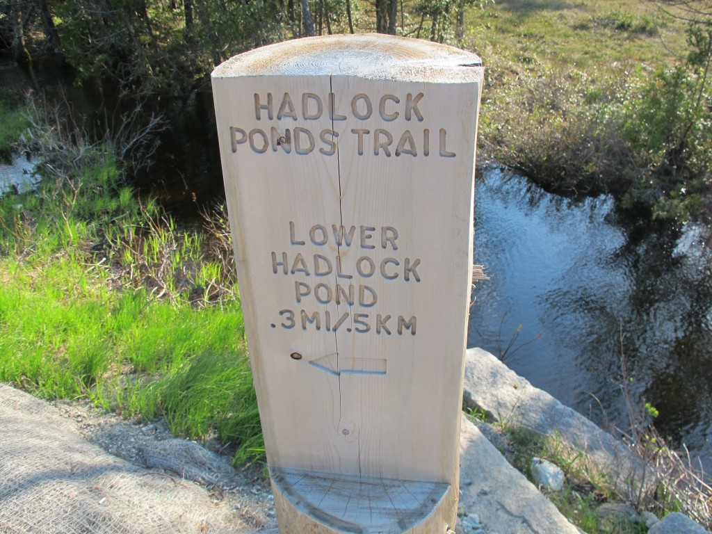 The short trail connects Upper Hadlock Pond (one of the prettiest spots on Mount Desert Island) with Lower Hadlock Pond. It connects to other trails that can extend a hike considerably.