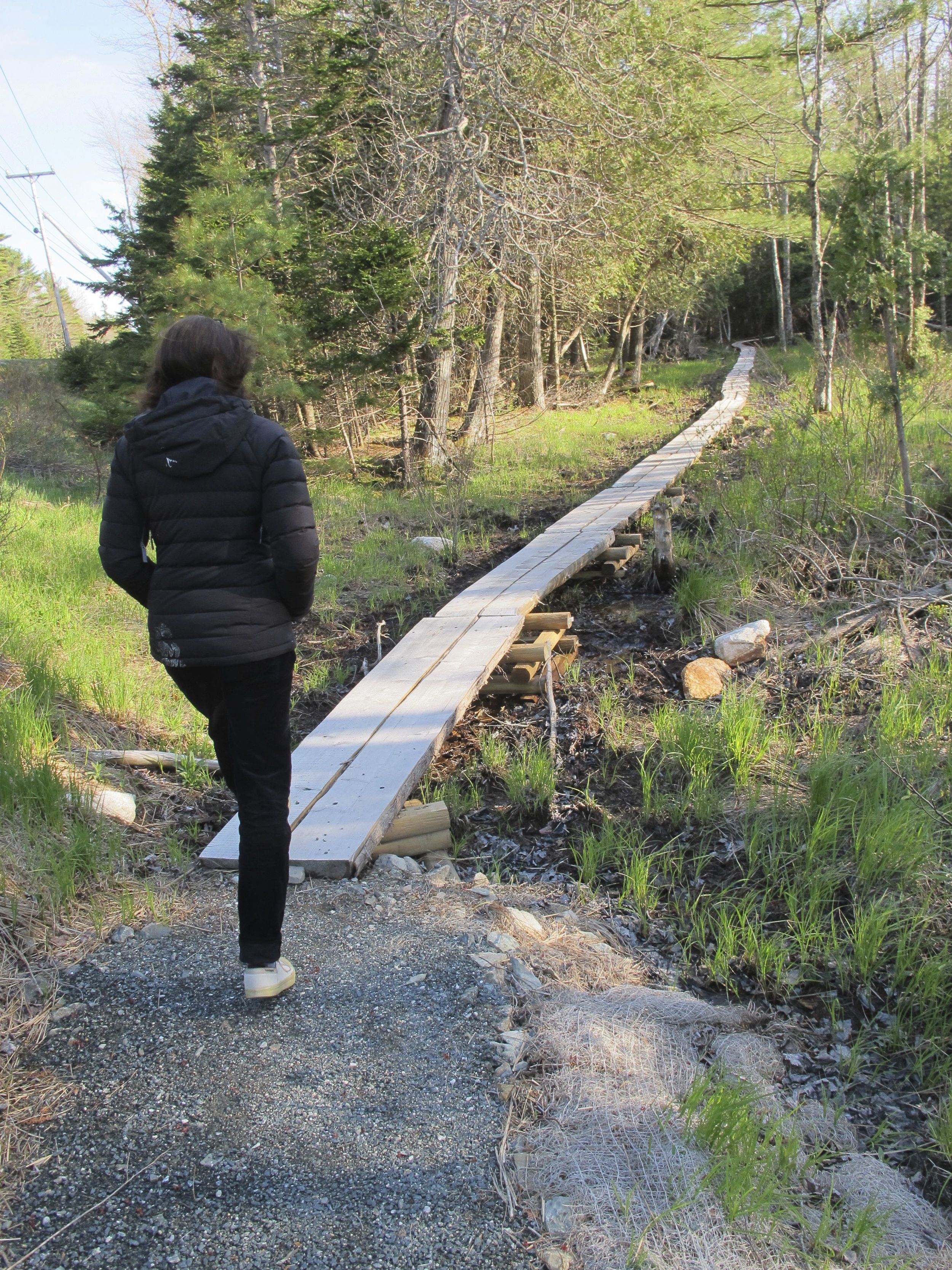 The trail has been improved in parts with a split-log path, which keeps hikers' dry in boggier sections.