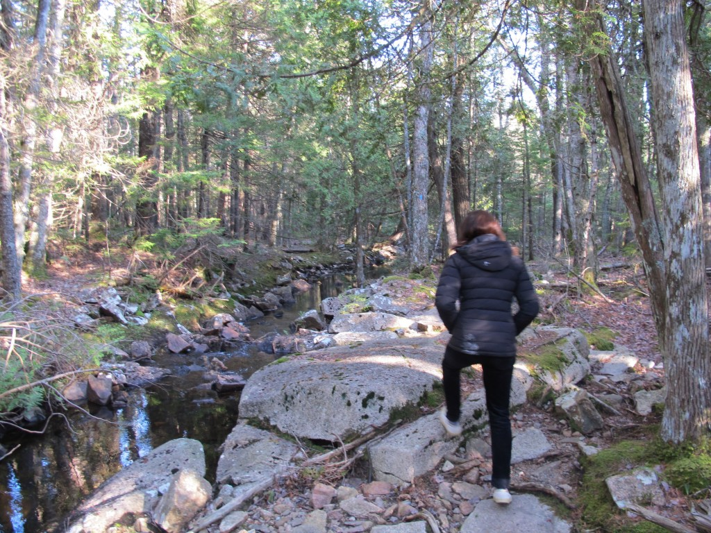 Climbing over granite slabs and chunks is a quintessential part of hiking in and around Acadia National Park.