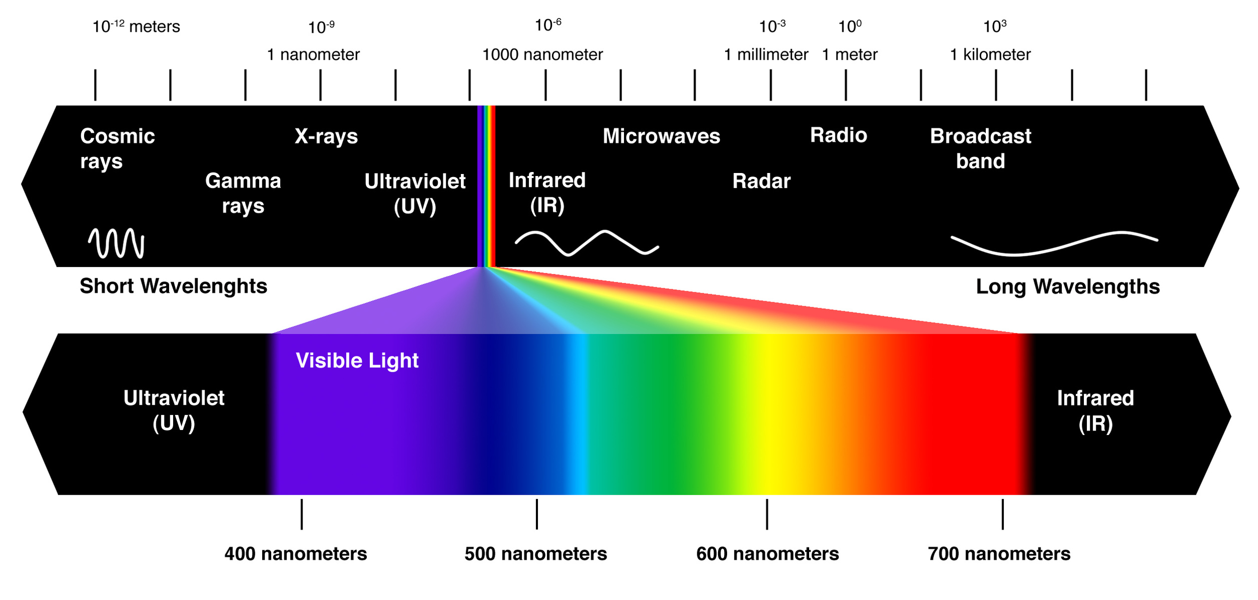 The electromagnetic spectrum. Notice how little of  it we humans can see.