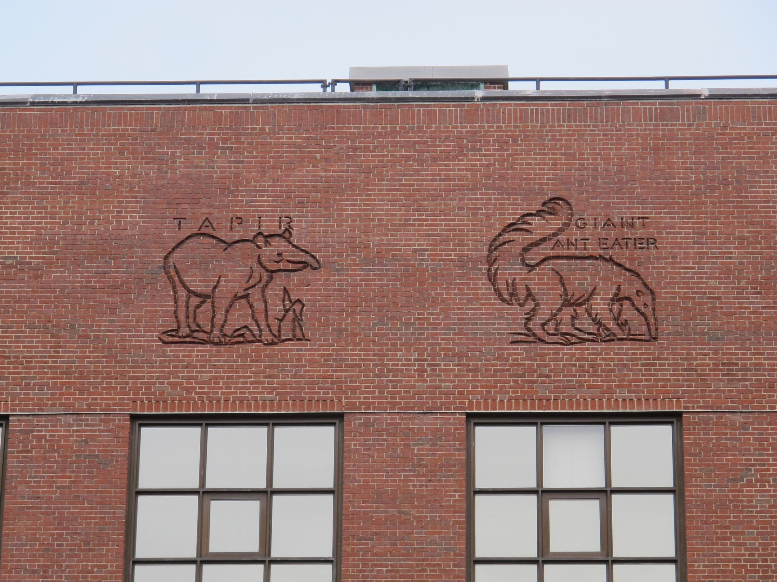 The animal frieze was carved into the brick face of the Bio Lab by workers during the Great Depression.