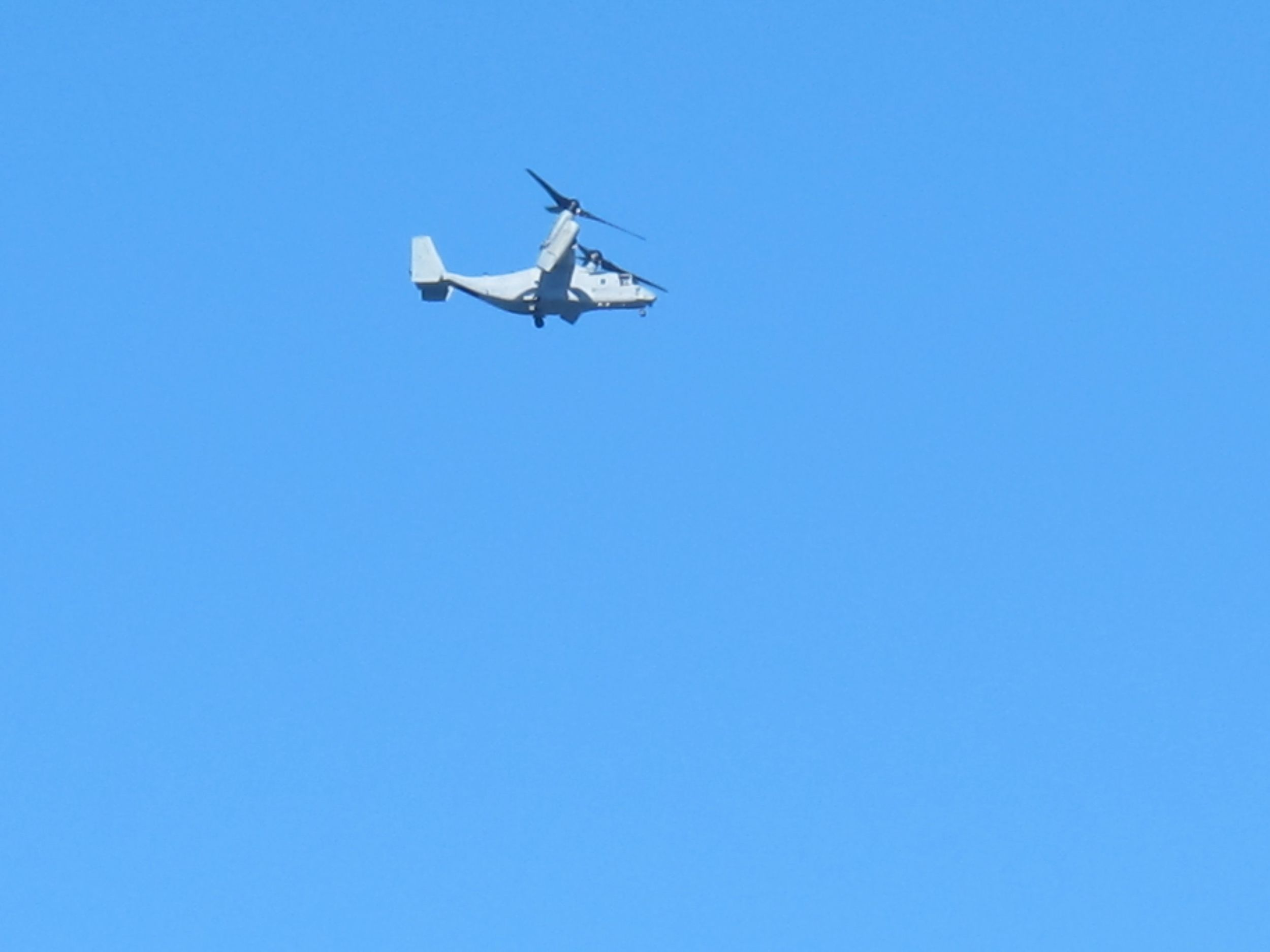 We also saw ospreys—that is, Osprey tiltorotor aircraft, which are a hybrid between a helicopter and an airplane and served as a reminder that San Diego is also one of the U.S.'s biggest Navy and Marine hubs.