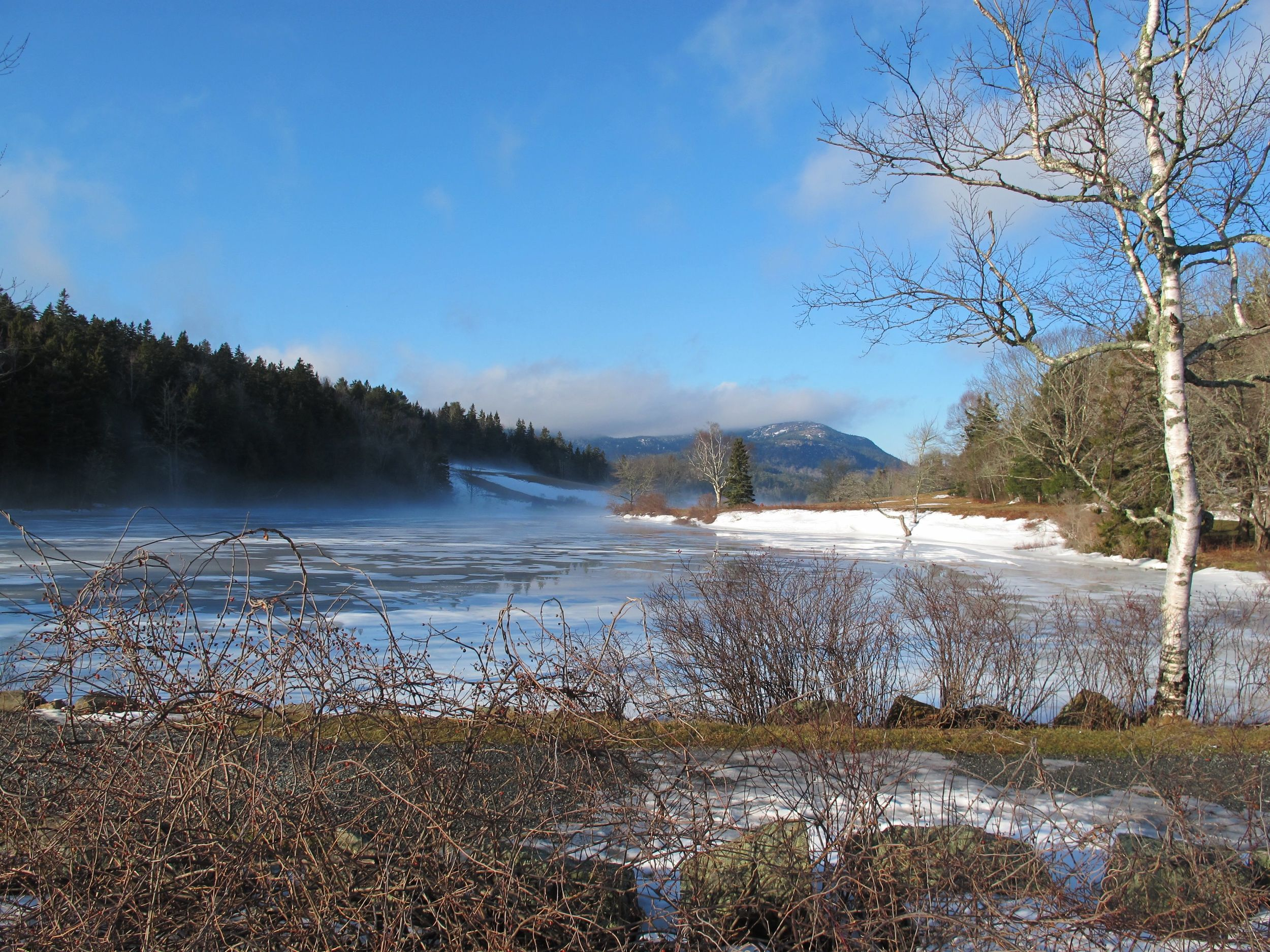 Little Long Pond, near The Naturalist's Notebook, as snow turned into snow fog during a blast of high-40s warmth.