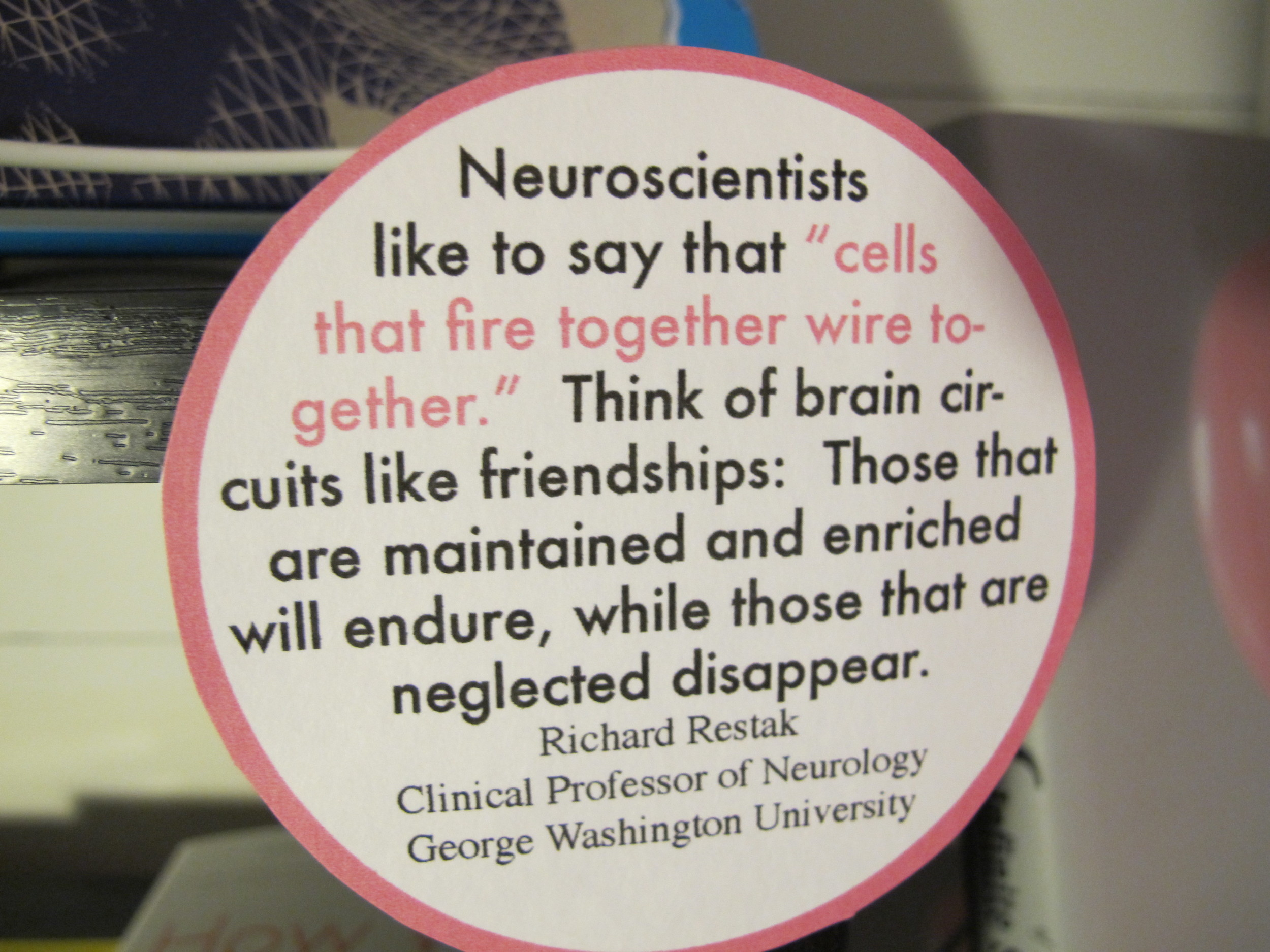 From the brain section at this year's Notebook.