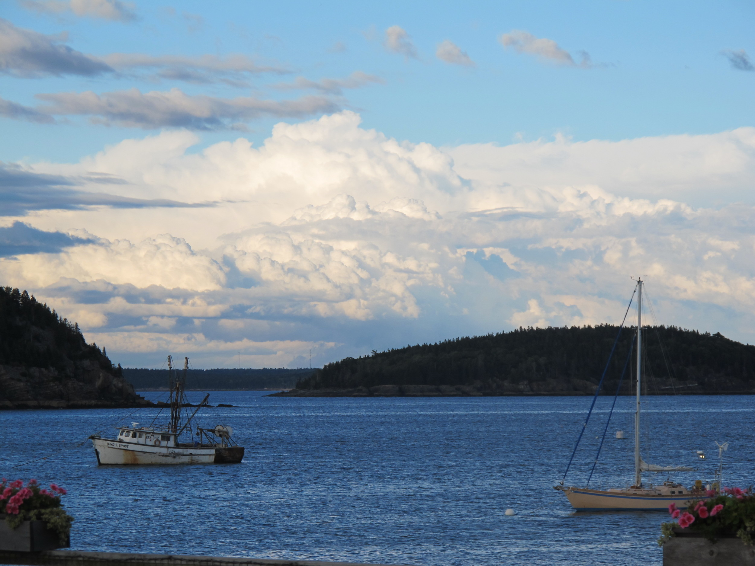 The postcard view earlier last evening in Bar Harbor.