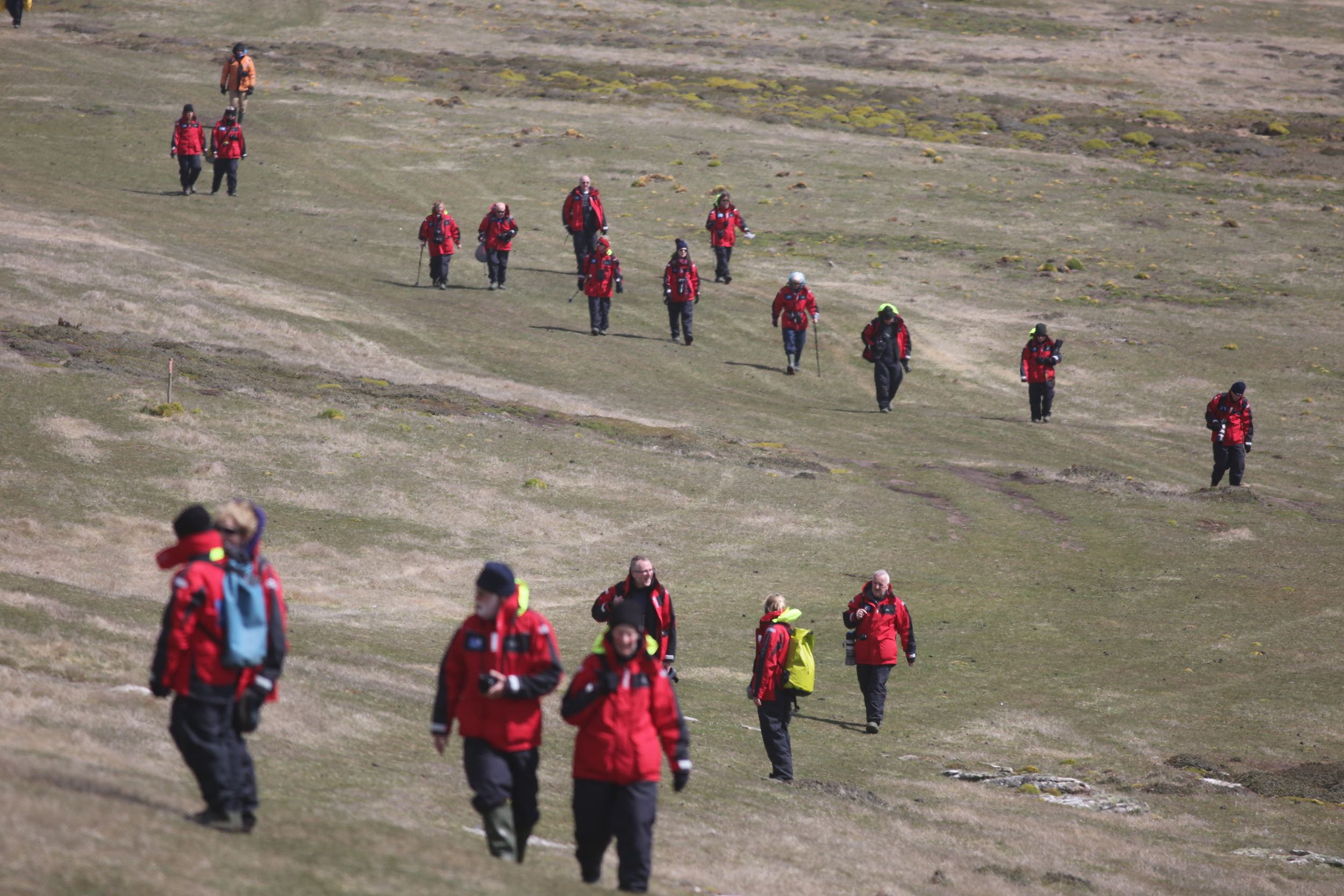 Our flock of red-coated wanderers finally hiked back toward the Zodiacs.