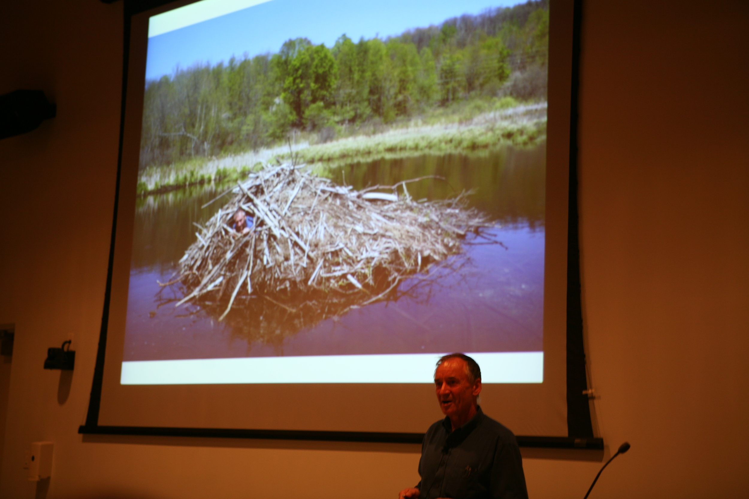 Bernd's talk at the Schoodic Education and Research Center (SERC) Institute drew a full house. Yes, that's Bernd's head popping out of the beaver lodge in the slide. He'll go anywhere to learn how nature works.