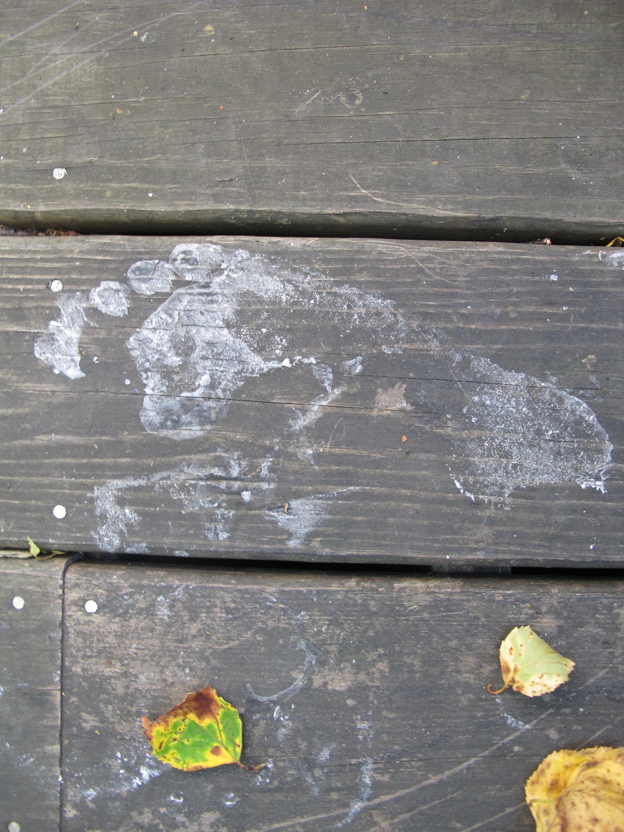 We began creating a Moon-rock installation on the deck at the Notebook and, like the late Neil Armstrong, left behind our lunar footprints.