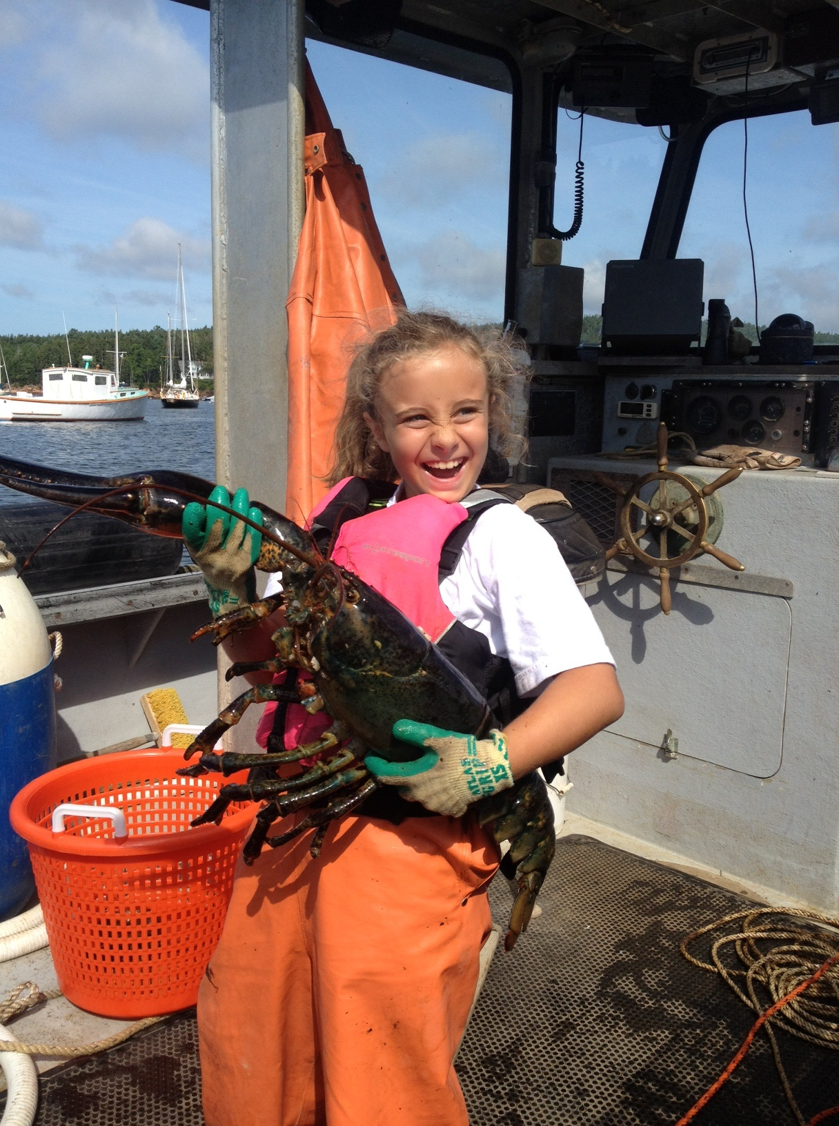 I was surprised (though not really) to find out that Sarah, one of the Notebook's youngest friends and collaborators, has gotten a lobstering license. She pulled this 30-inch, nine-pound lobster out of one of her traps.It was WAY too big to keep; Maine is a leader in protecting larger, older lobsters because they are the best breeders (and, after all, have earned special treatment after surviving in the ocean for decades!).
