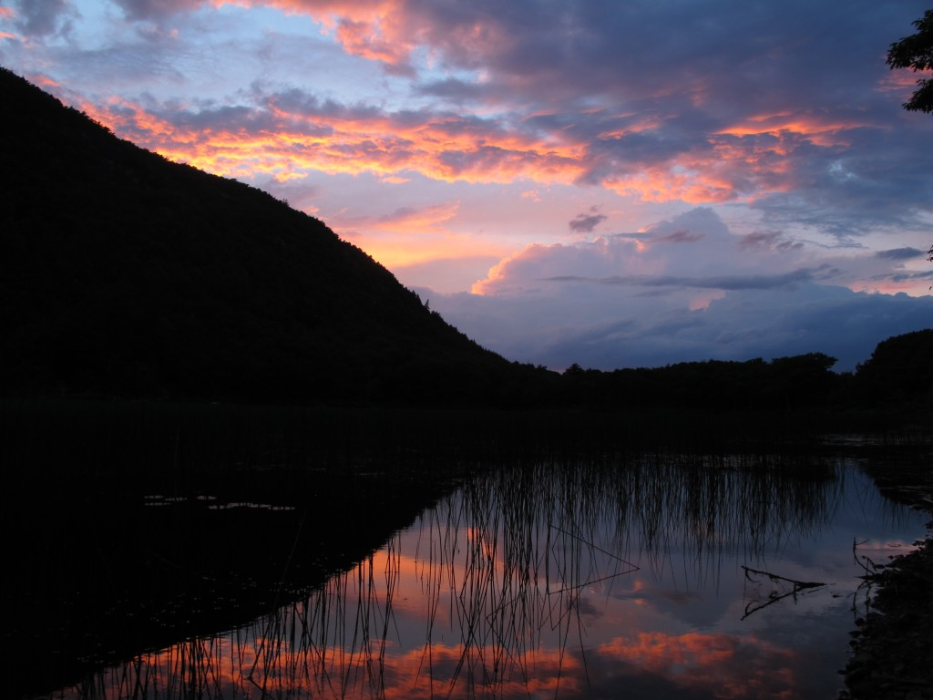 The scene when we stopped a few evenings ago at the Tarn, a grassy pond that fills a glacial depression in Acadia National Park. The frogs were croaking in basso profundo unison as the sun set.