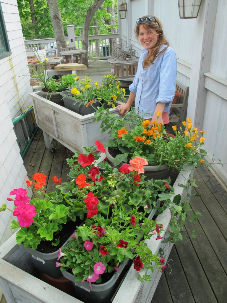 Haley is designing our flower boxes, which also will highlight colors in the order of the spectrum as part of a much broader project Pamelia has created.