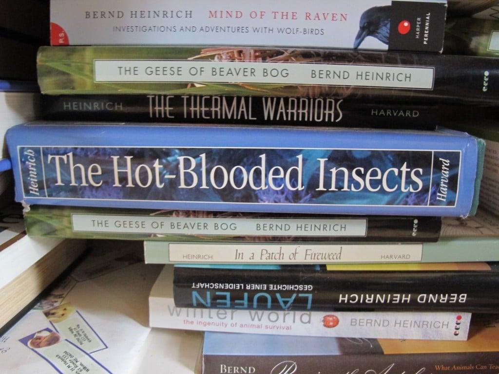 A few of Bernd's books in the studio.