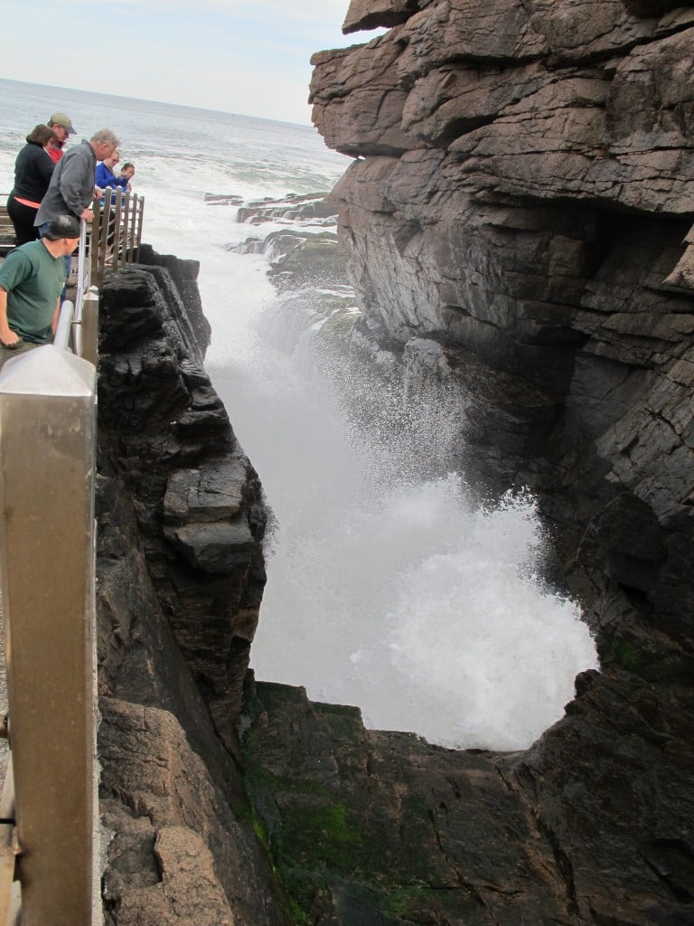 Our Earth Day week included a mountain hike in Acadia National Park and a stop to show three guests the waves, churn and BOOM at Thunder Hole, which was in rousing form.
