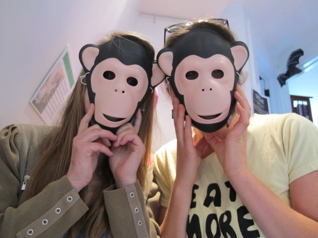 Two of our primate helpers at the Notebook this week.