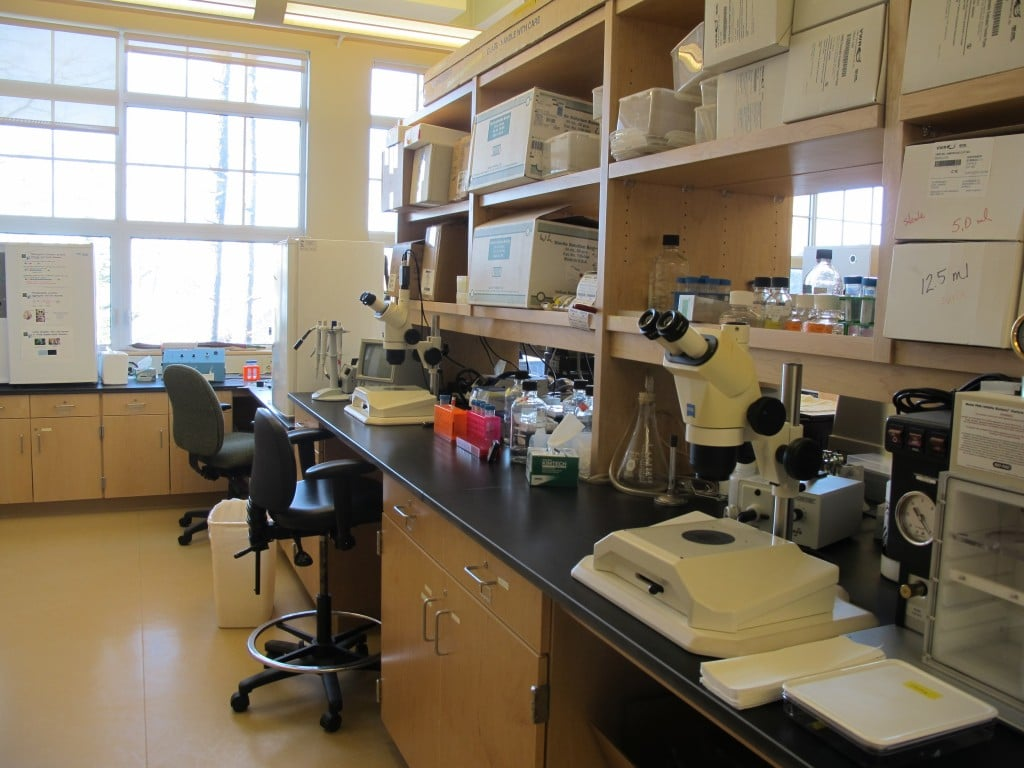 One of the labs in the new green-designed complex. In addition to the high-level reseach done here by top scientists, high school and college students learn to do things like clone genes and synthesize DNA.