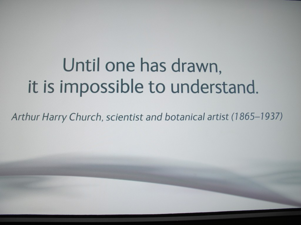 We came across this quotation at the Natural History Museum in London. Arthur Harry Church was a painstakingly precise botanist and illustrator who worked from specimens at Oxford University, where he taught. He was so absorbed in plants that the middle names he gave his three daughters were the Latin terms for hollyhock (Alcea), leopard's bane (Doronica) and hazel (Coryla).