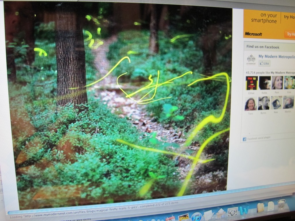 Click on the link below for more of Kristian Cvecek's firefly images.