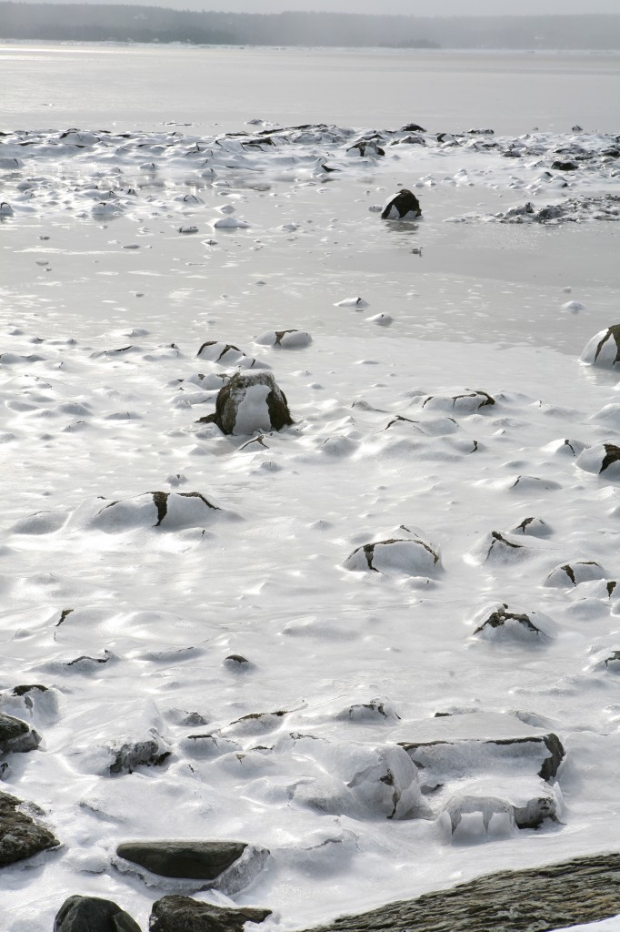 Is it just me, or do these rocks popping up through our ice make you think of dinosaur eggs hatching? O.K., it's just me.