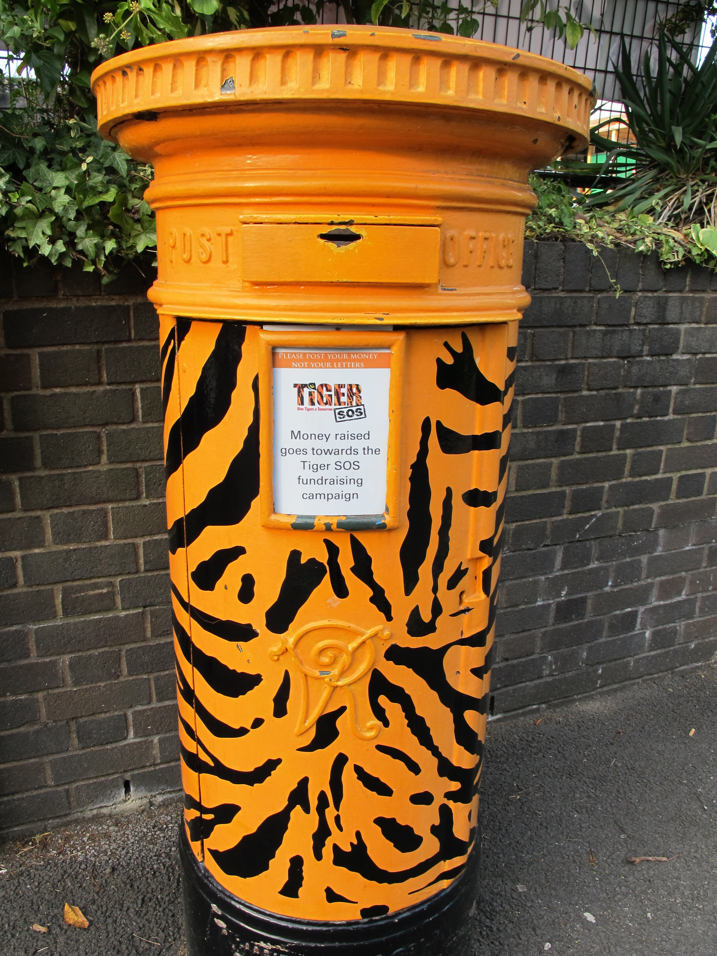 This Victorian-era post box at the zoo now begs not for mail but for donations to save tigers. The latest National Geographic has an excellent section on how we might yet save not only the world's desperately endangered tigers but also other big cats.
