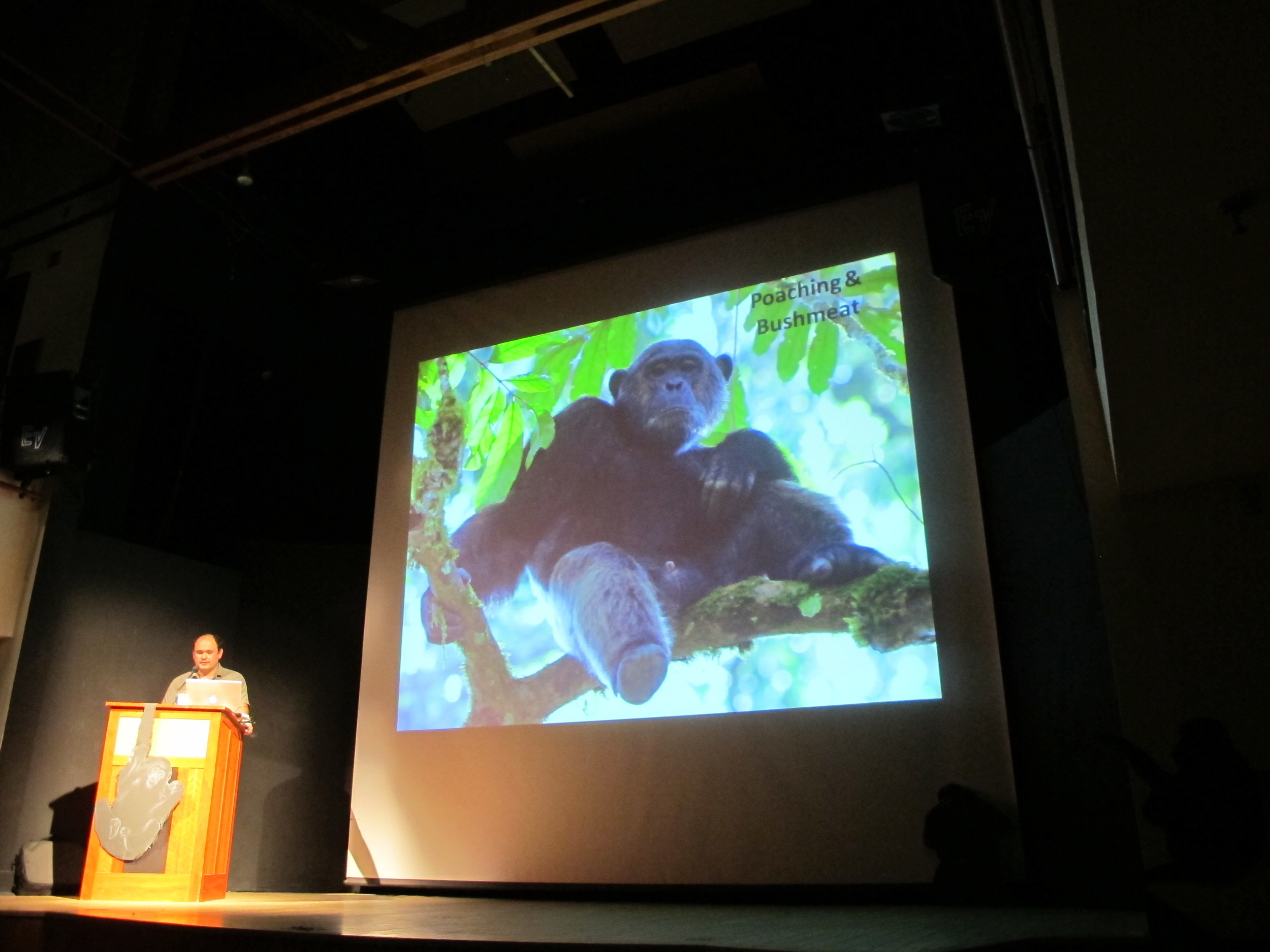 Lilian discussed everything from conservation technology to Jane Goodall's 300-day-a-year travel schedule to the problem of poachers killing chimpanzees for bushmeat.