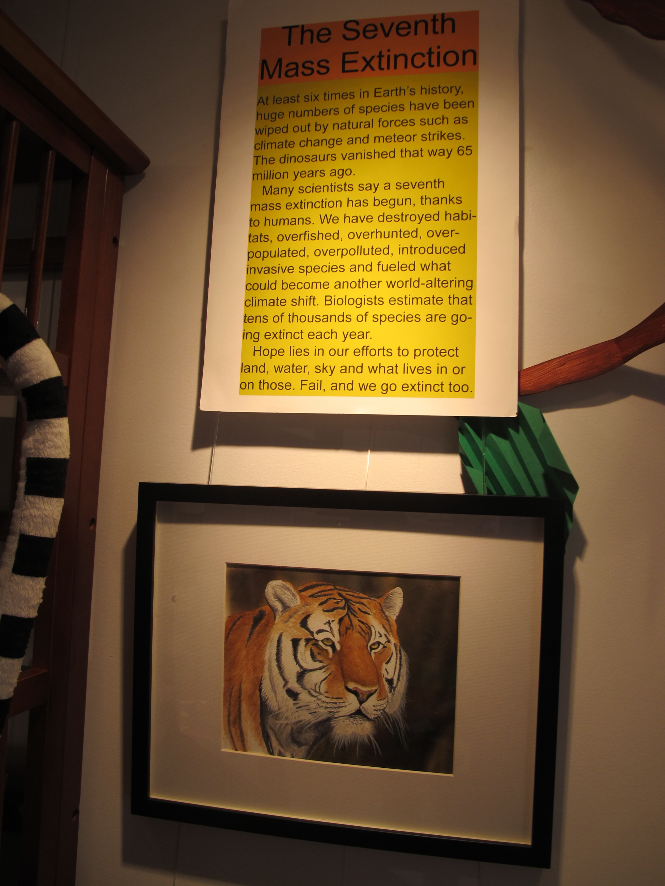 A Siberian tiger painting by Luke that's in our biodiversity area.