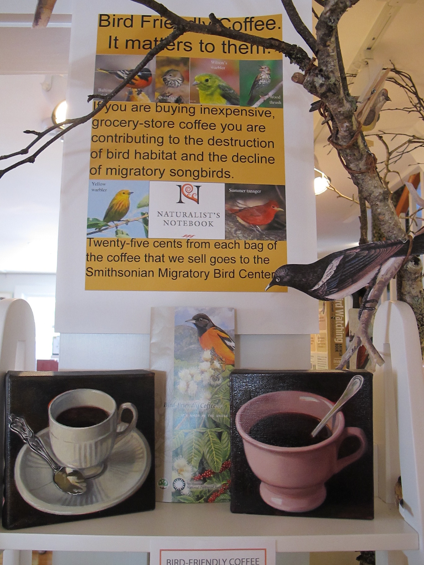 Part of last year's Naturalist's Notebook display on the importance of drinking shade-grown, bird-friendly coffee.