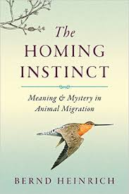 The Homing Instinct