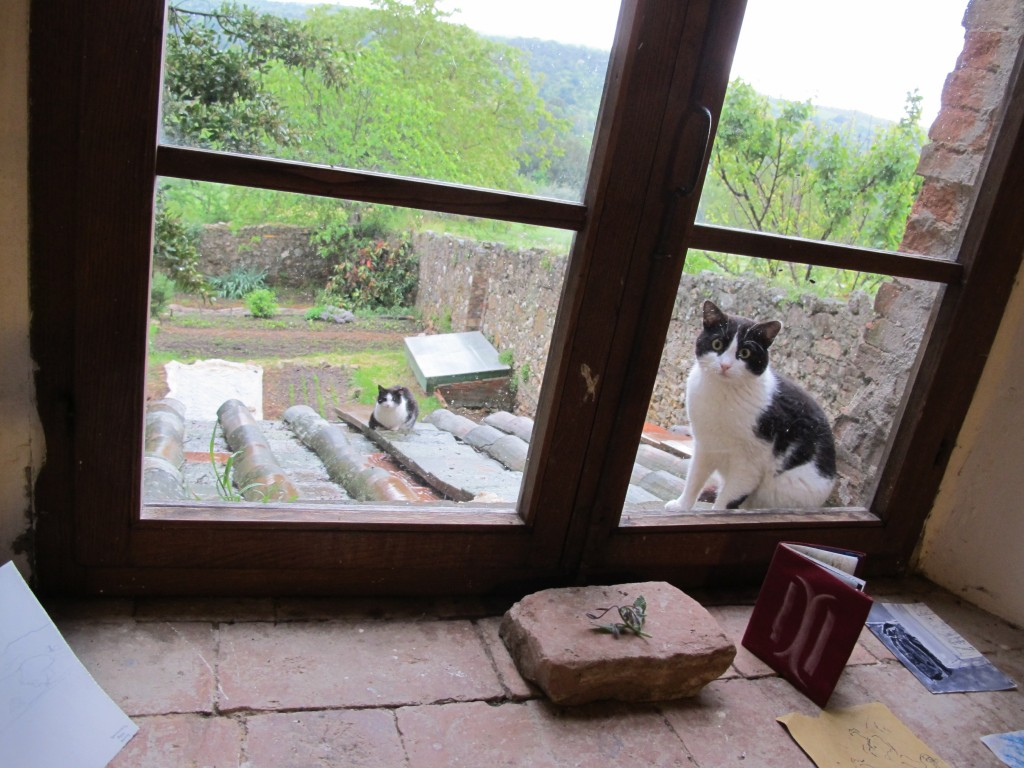 Other curious observers came by the studio window to watch us work.