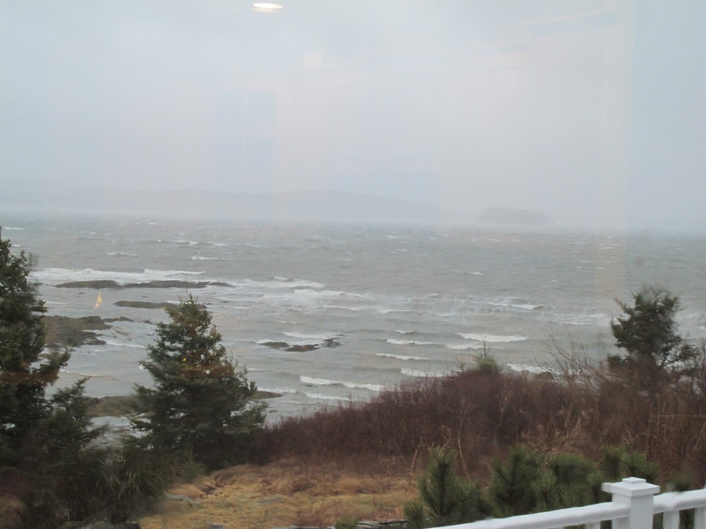 Even as the tide went out yesterday at our house, the bay and the weather were wild.