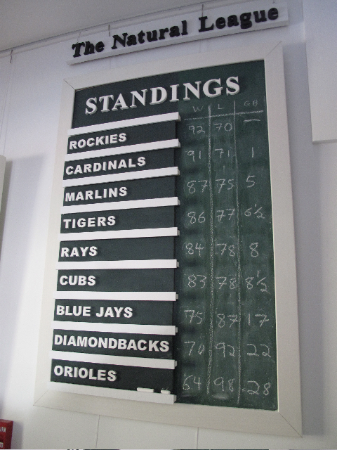 The final 2009 standings in the Natural League, made up of the nine major league baseball teams with names taken from nature.