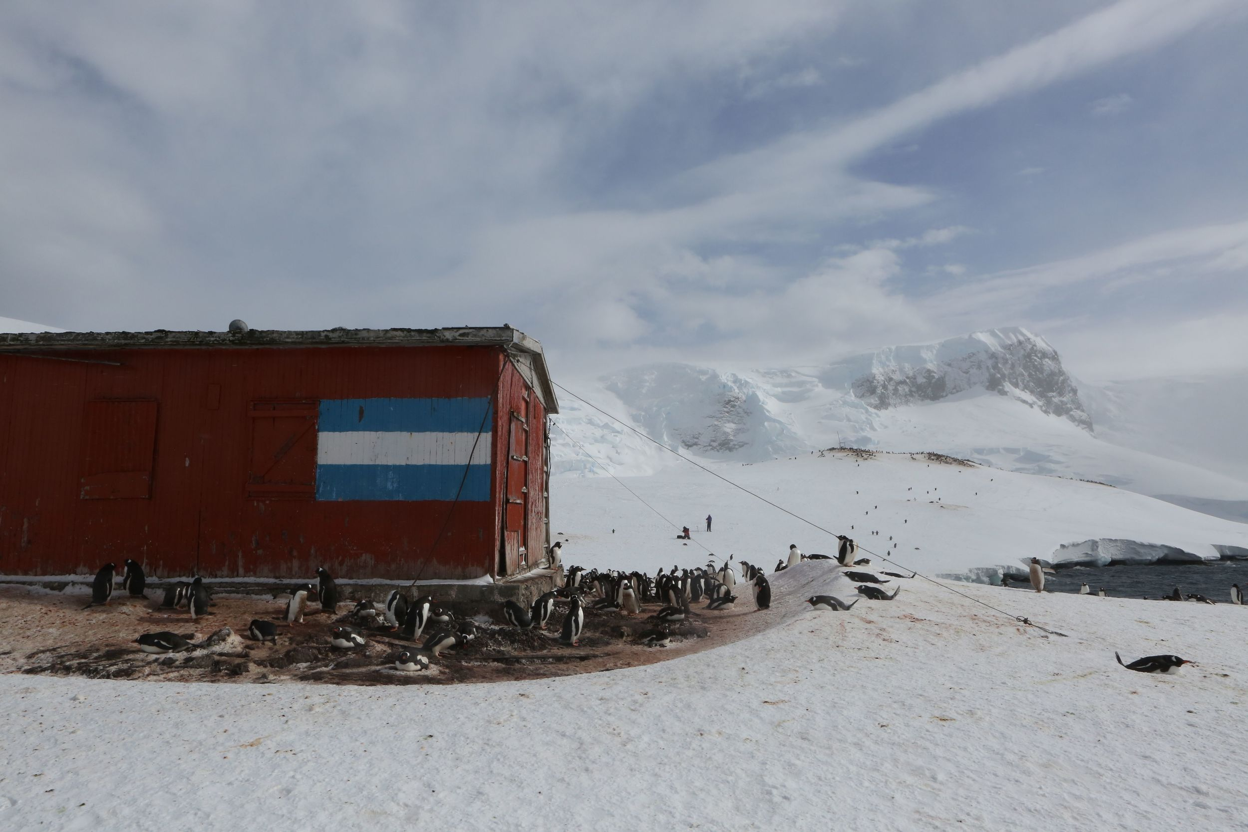 This was an emergency hut—the first we'd seen on our trip through thousands of almost completely human-free miles. That is an Argentinian flag painted on the side, a reflection of the closest neighbor on the South American continent.
