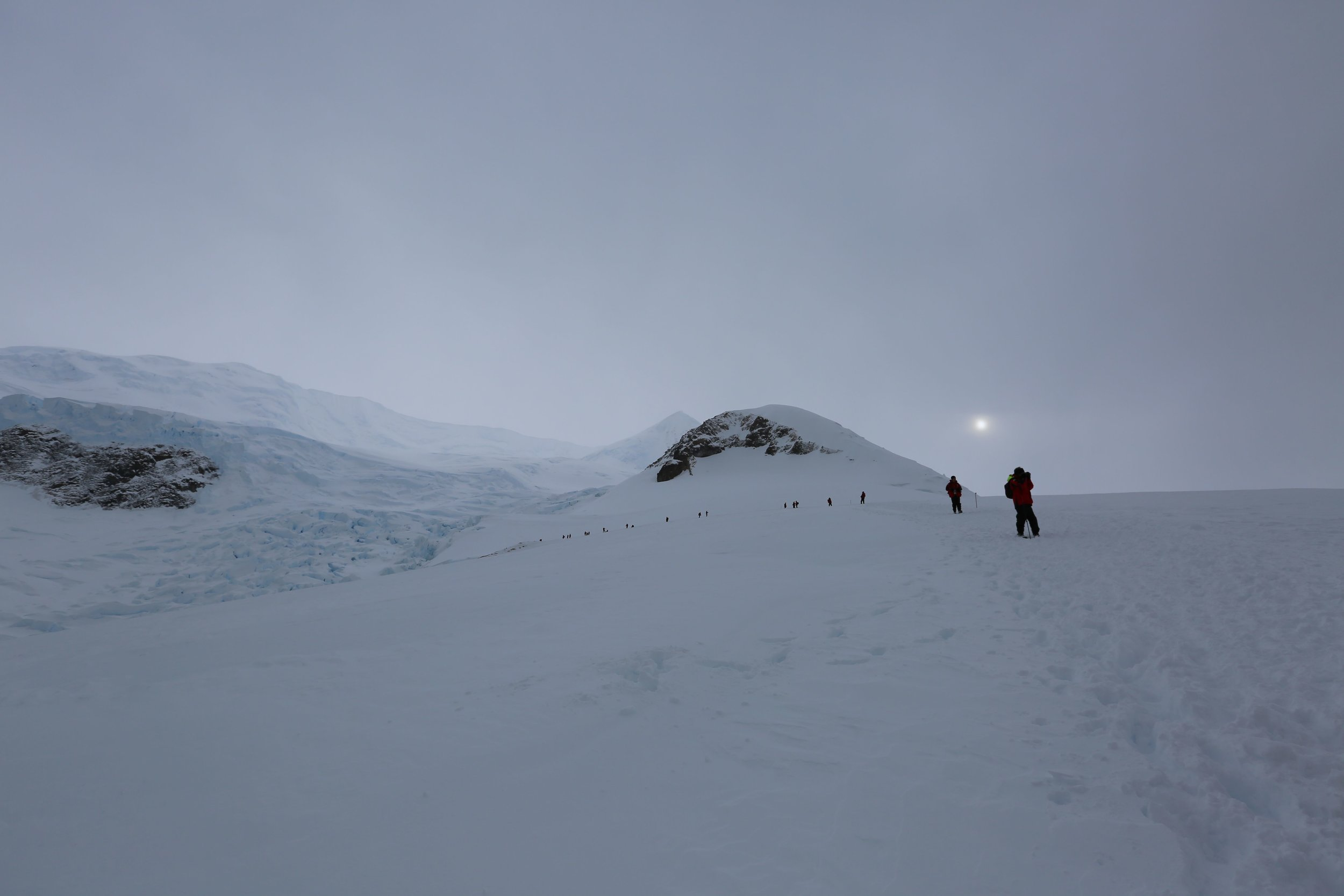 antarcticanekotrek.jpg