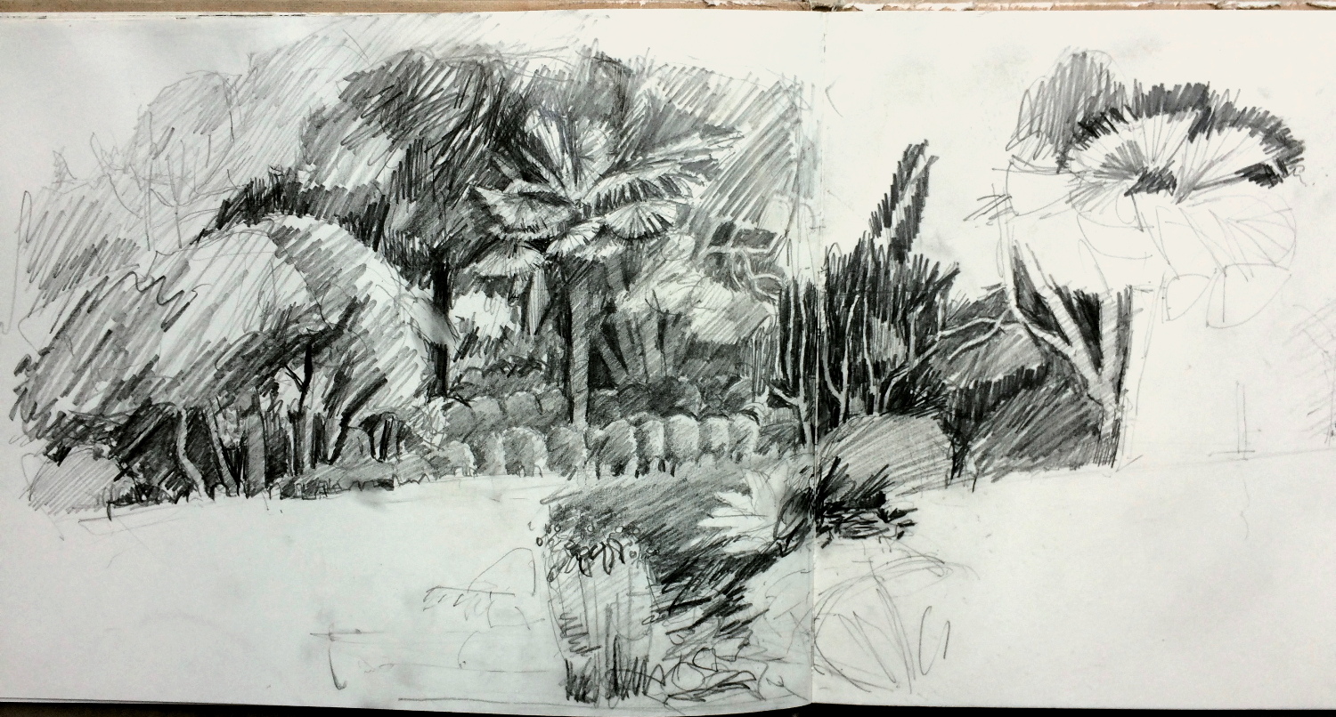 Ella Clocksin (2016) later stage of sketchbook drawing at Overbecks National Trust garden.