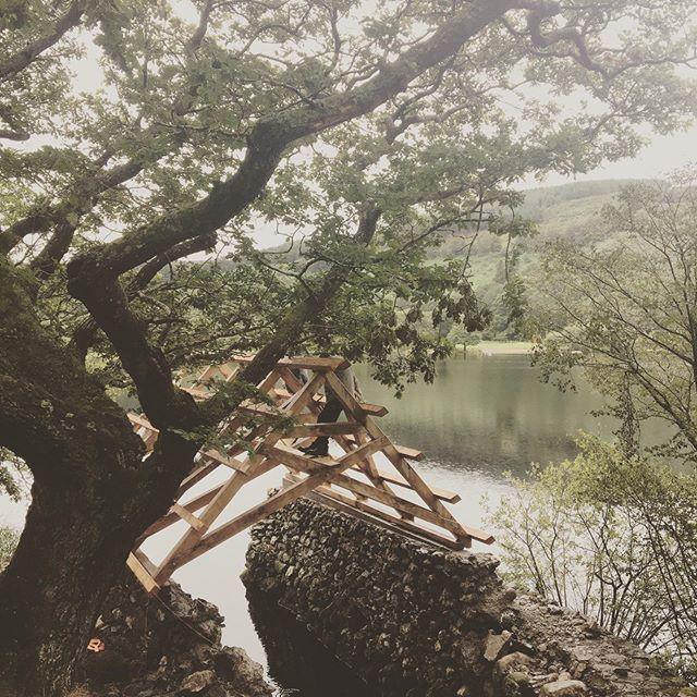 Irish ☘️ Boathouse fresh oak wood, lovely landscape in the Irish bush. ##woodfeelsgood #wood_feels_good # woodwork #Irish #irishwoodworking #woodhouse #carpenter #craftmanship #lake #oaktree #wood #oak #zimmererkunst #holzbau #holzhaus #holzverbindung #holzhaus #bootshaus #see #landschaftsfotografie #architektur