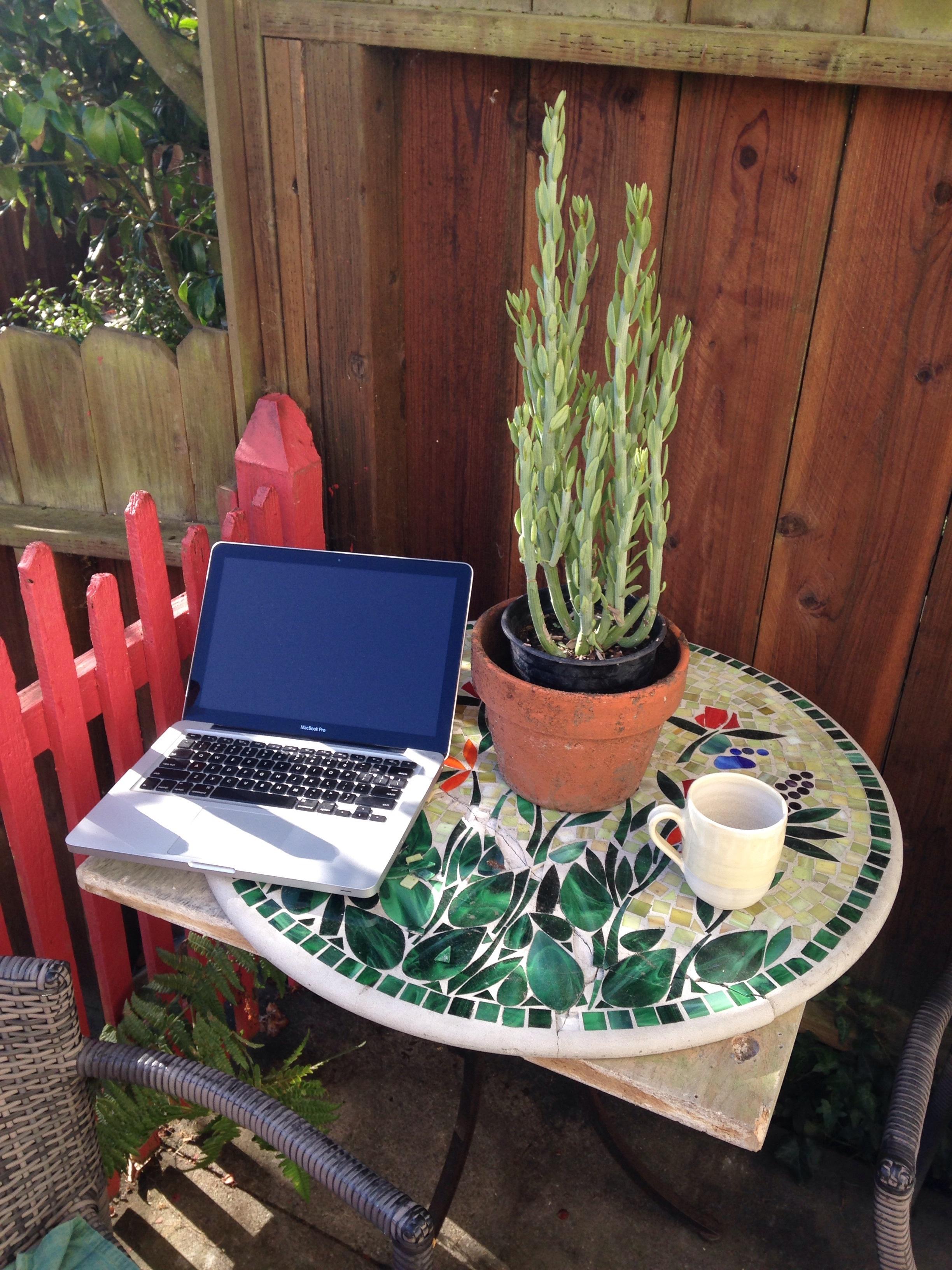 Backyard, author's home, Richmond neighborhood, San Francisco, Ca. 8:30 a.m. August 31, 2017.