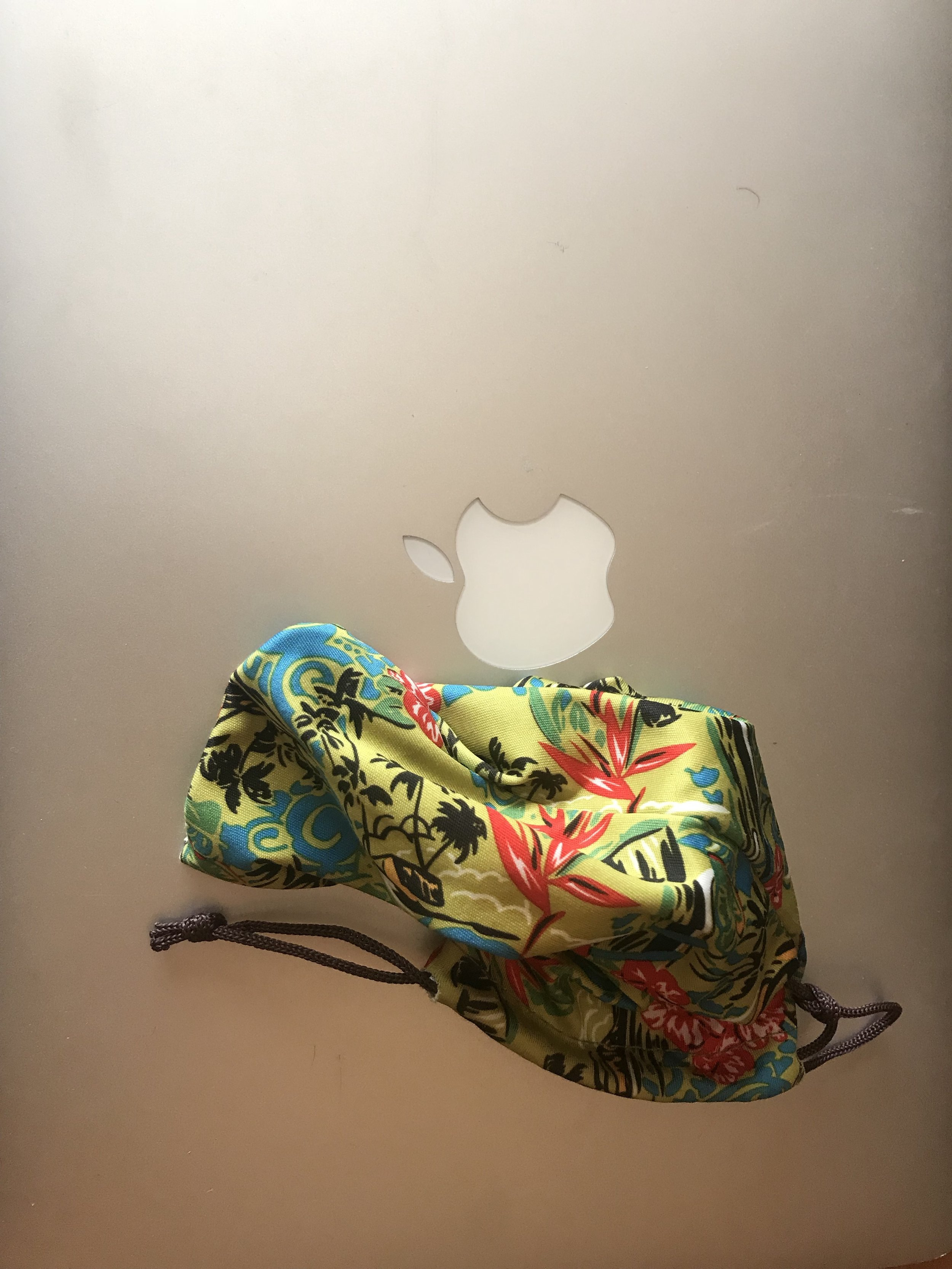 'MacBook Pro and Lea Ann's Coinpurse', a photographic composition in the author's private collection, September, 2018.