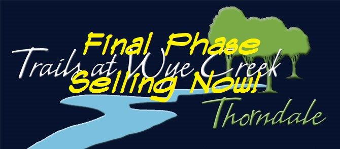 TWC Logo Final Phase.jpg