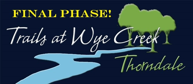 Twc+Final+phase.jpg