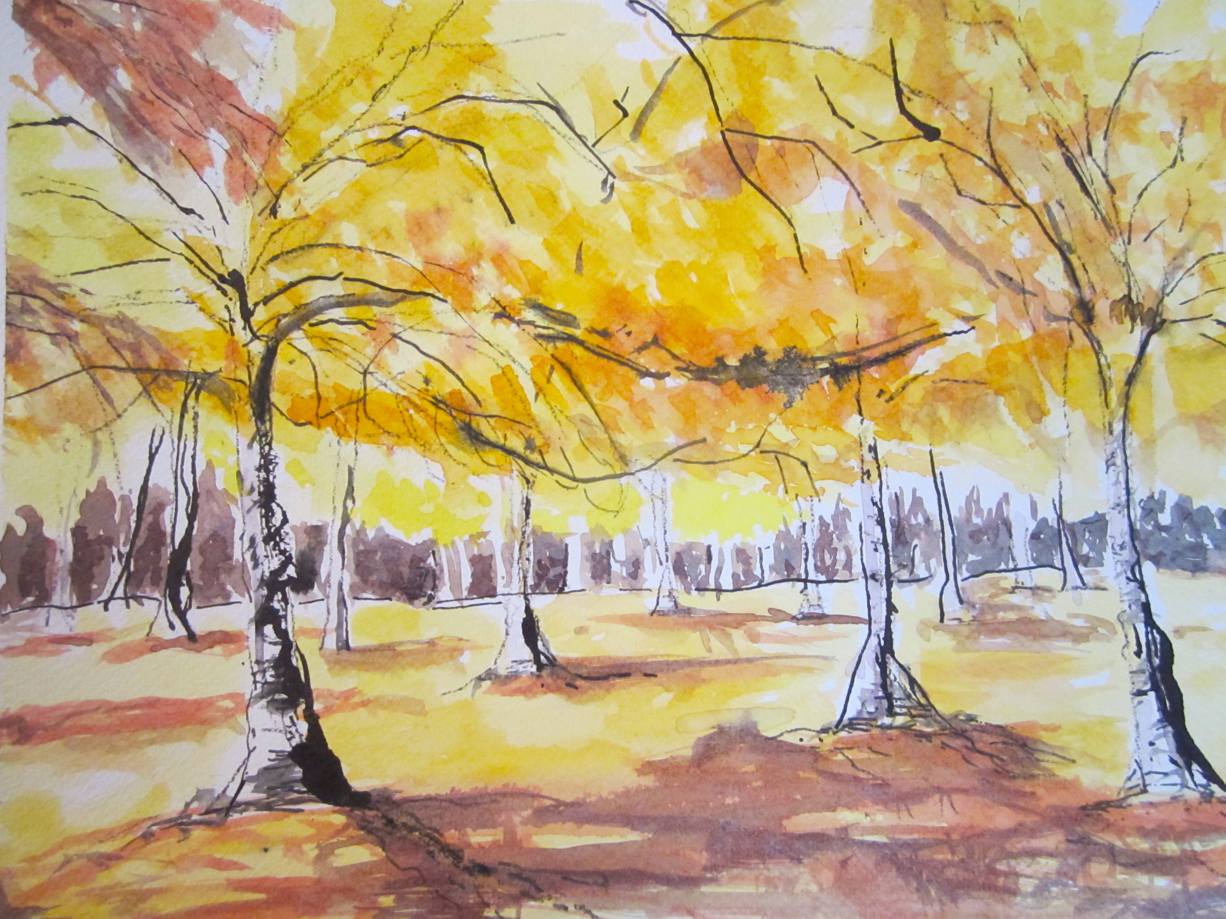 Autumn at Greenlake