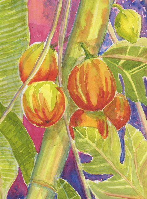 Exotic Papayas