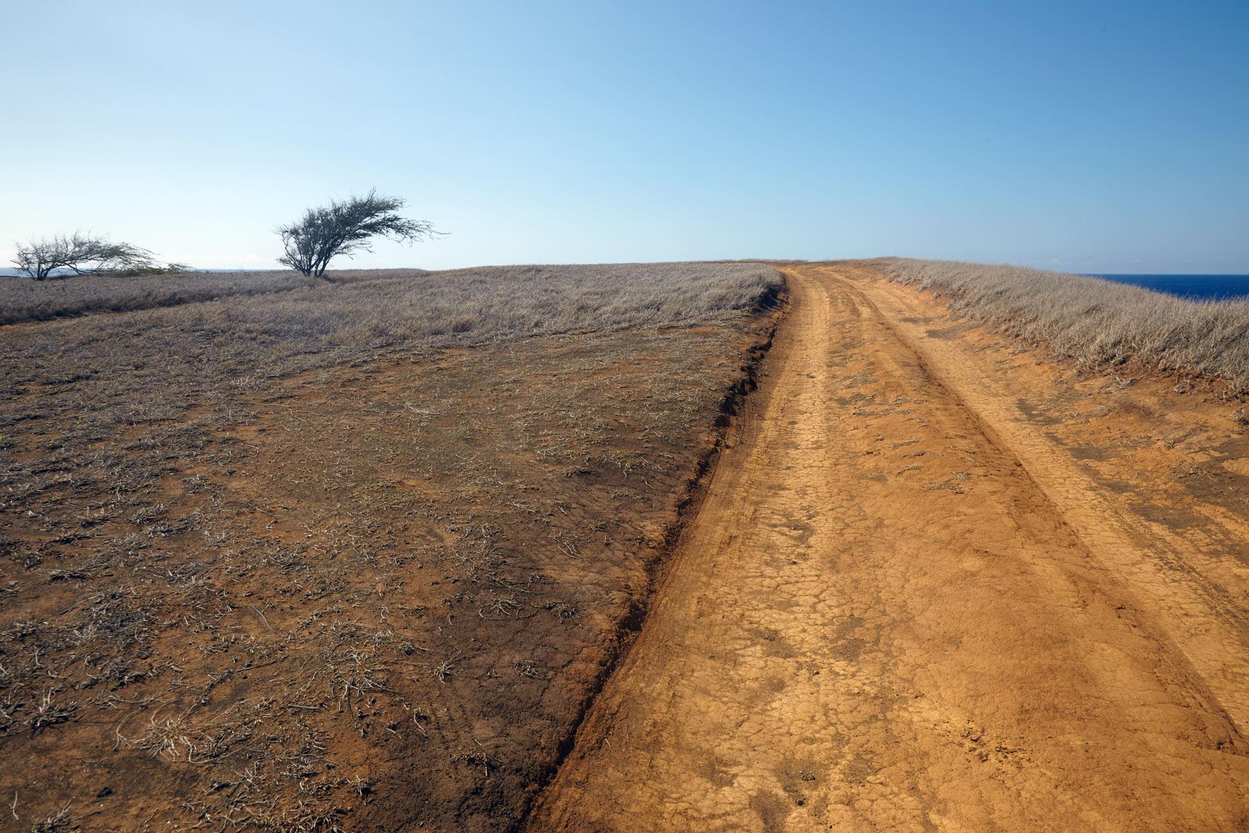 Hawaii_Big_Island_Dirt_Road.jpg