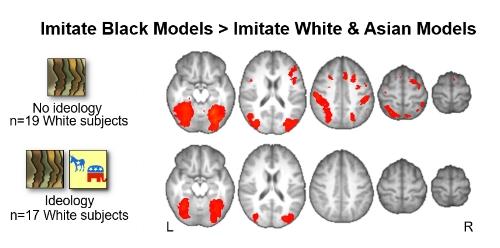 Losin et al. (2015) culture and brain