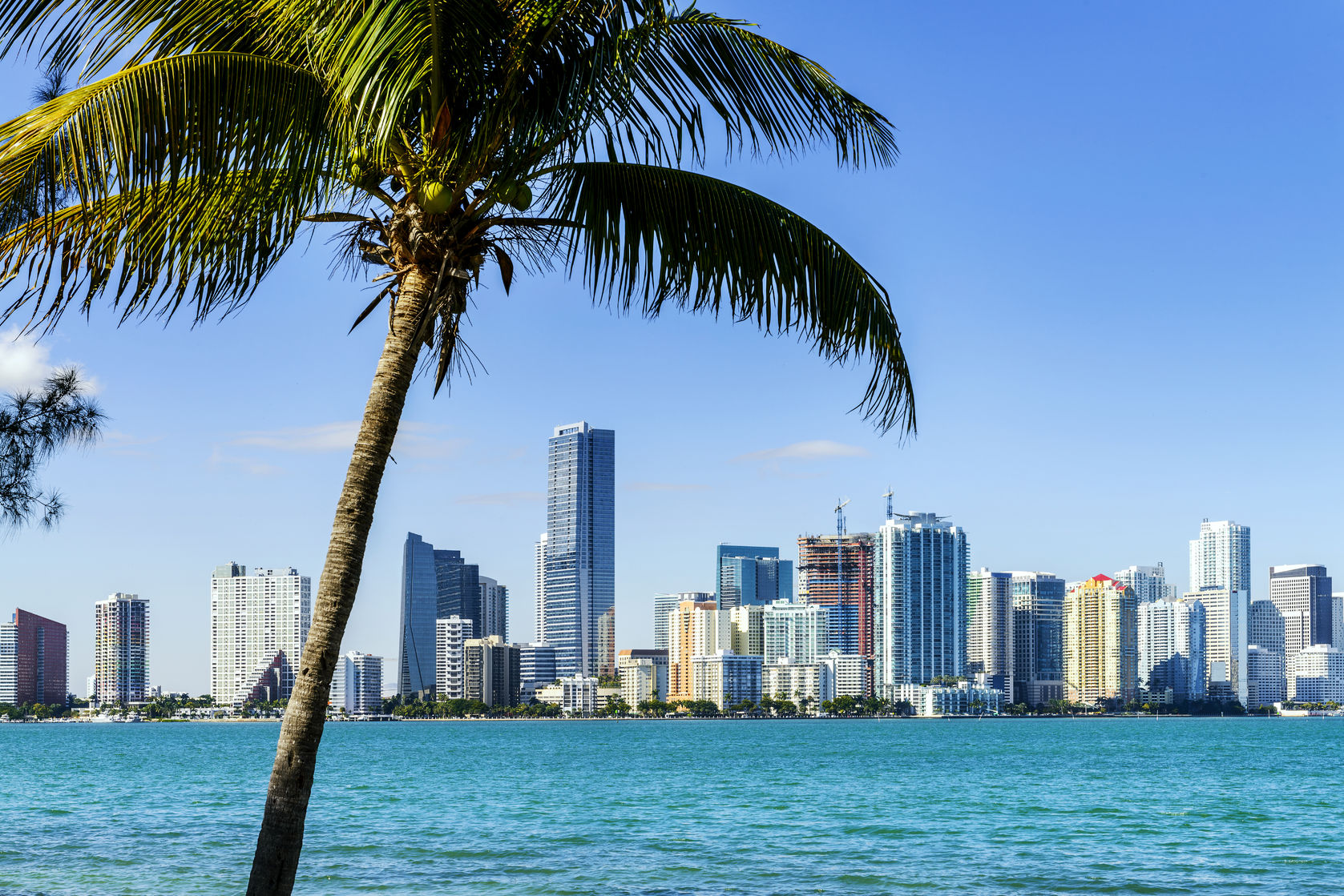Miami_collage_20110330.jpg