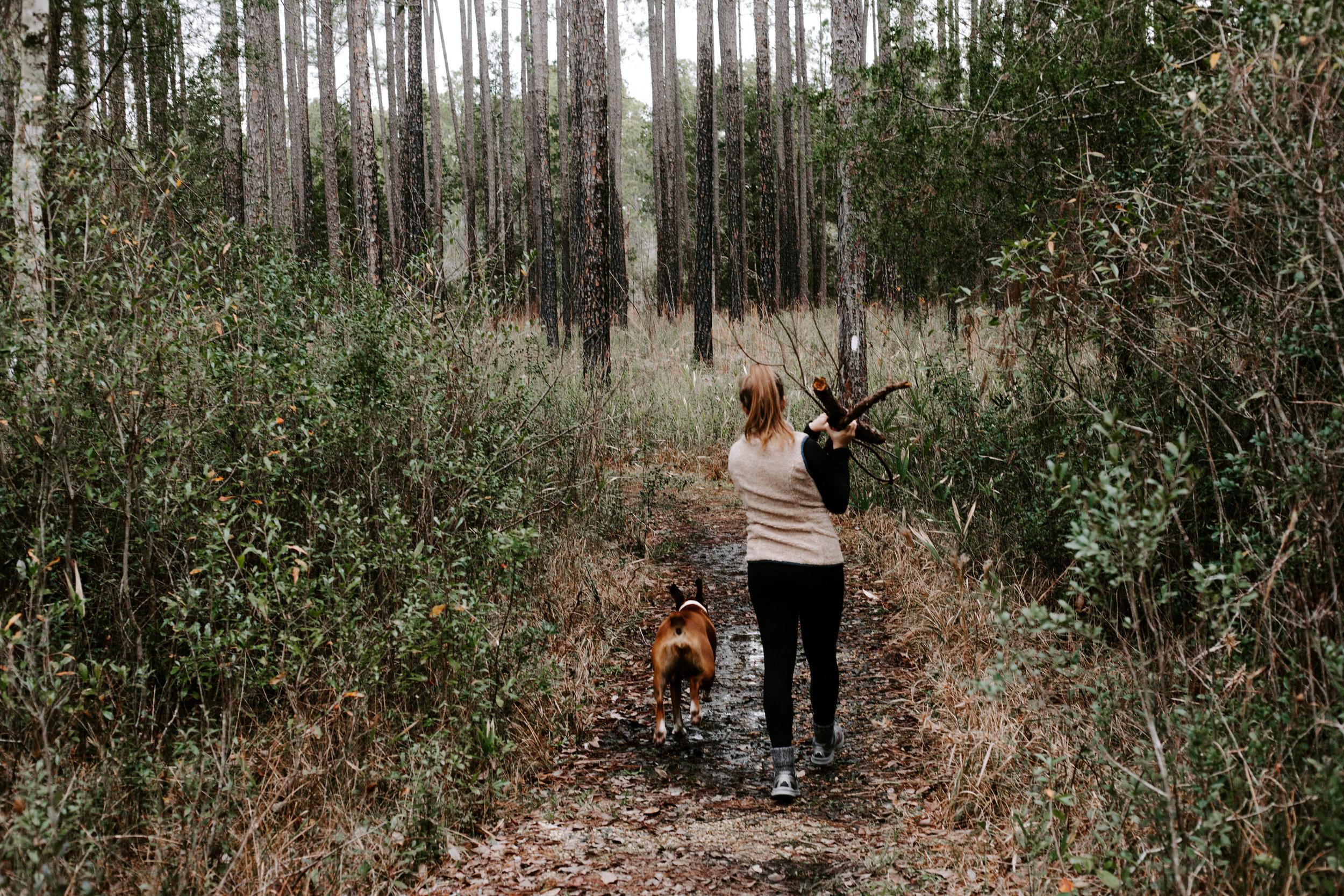 adventure in the woods