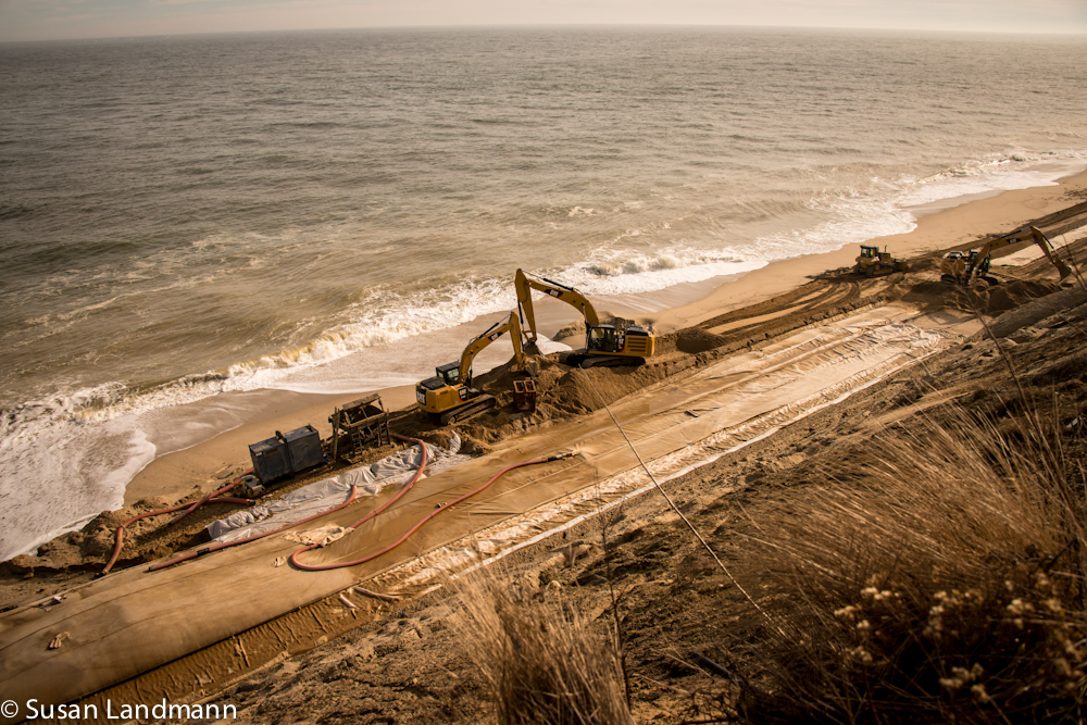 Diggers on the beach